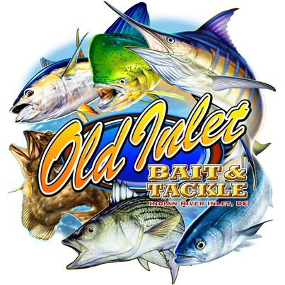 Old Inlet Bait & Tackle: Fishing Report